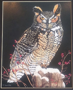 J. Doolittle - Owl.jpg