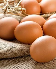 yumurta-vermek-2144.jpg