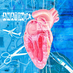 Frantic Clam Album Art
