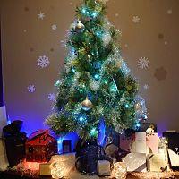 「Christmas Party」のお知らせ