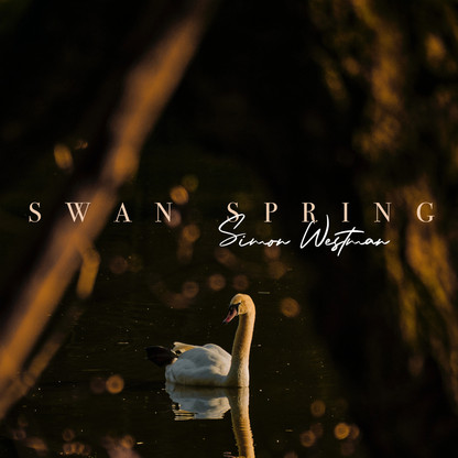New single release - Swan Spring