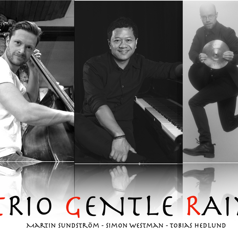 Trio Gentle Rain