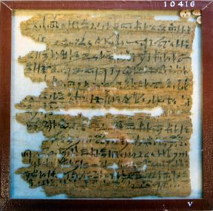 Papyrus_10416-310x306.jpg