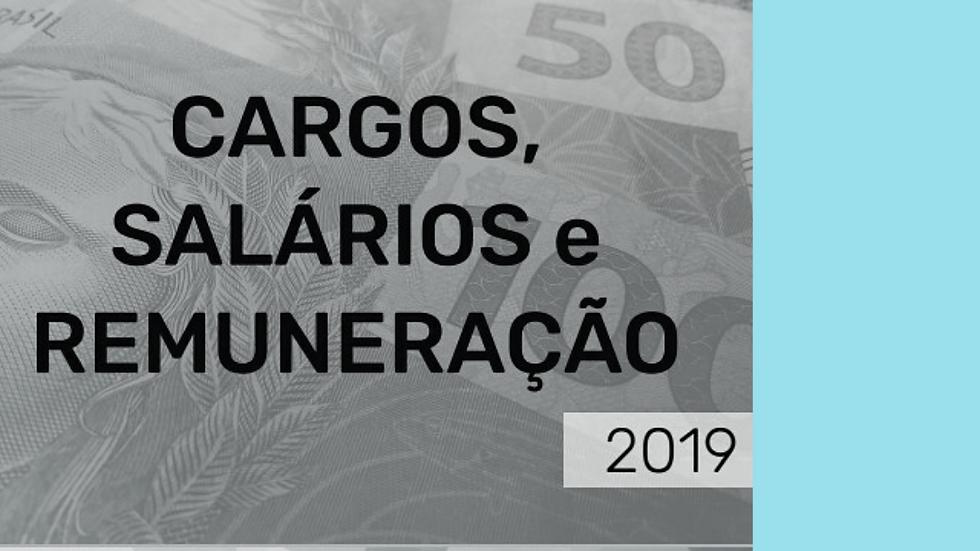 LIVRO DE CARGOS E SALÁRIOS SINVIDRO-MG/AMVID
