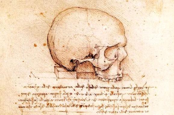 Da Vinci's Experiment