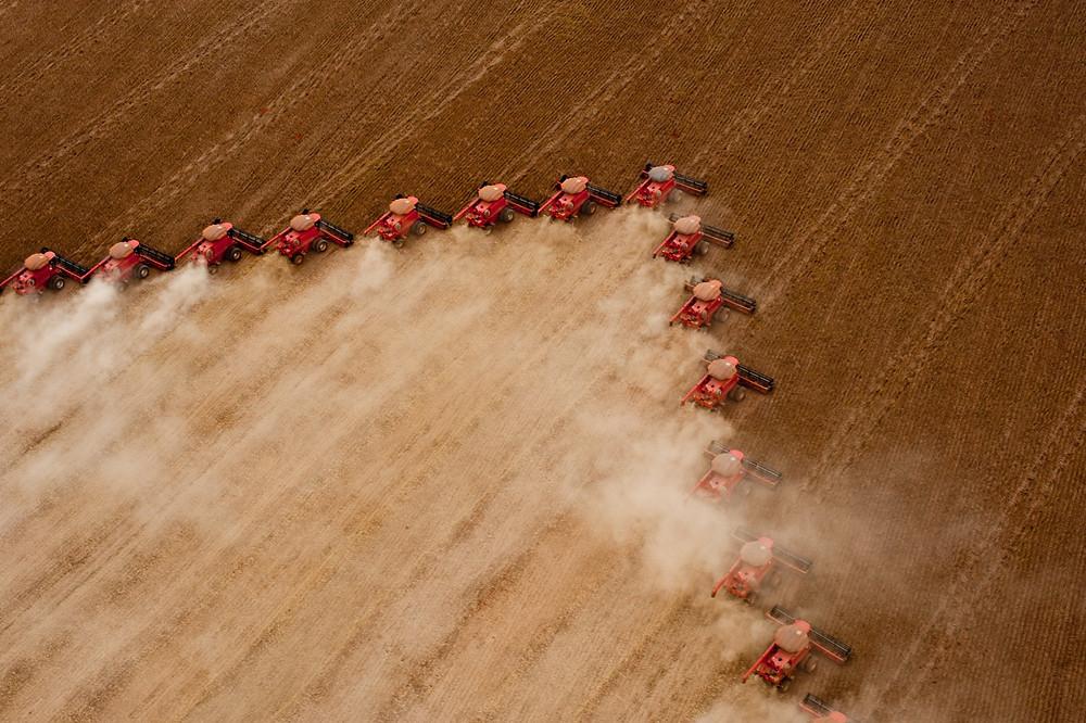 Produções de soja (foto) e de milho tiveram grande resultado no resultado do PIB Foto: Sedec-MT/Divulgação