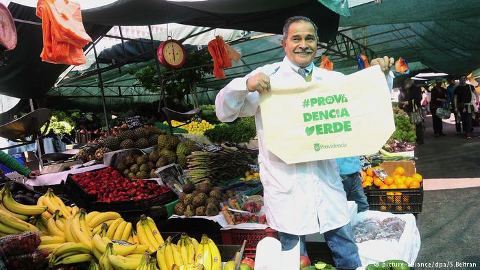 Feirante chileno adota sacola pano