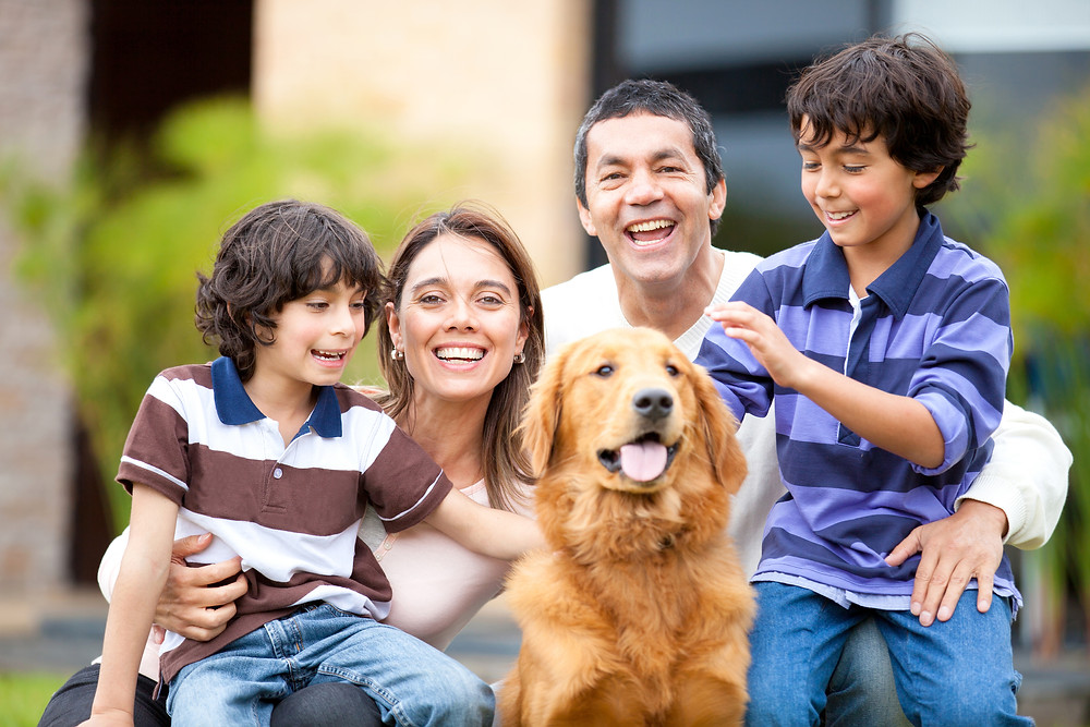Toda a família tem que estar disposta a cuidar do animal