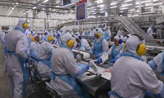 Comitê europeu decide barrar 20 frigoríficos brasileiros - Foto: Globo.com