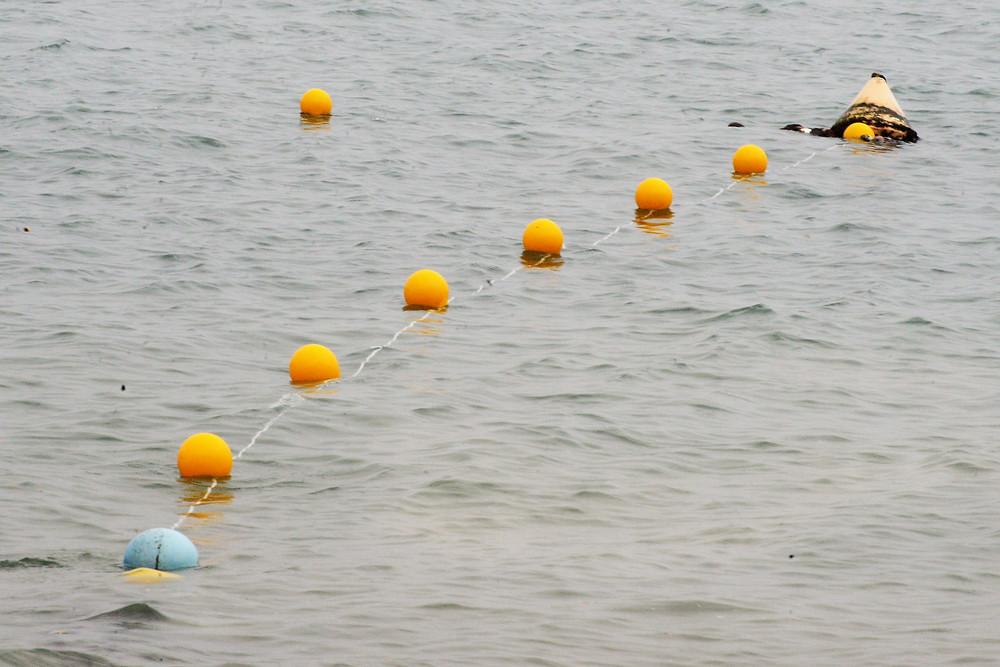 Ordenamento das praias - Foto: Ronald Kraag