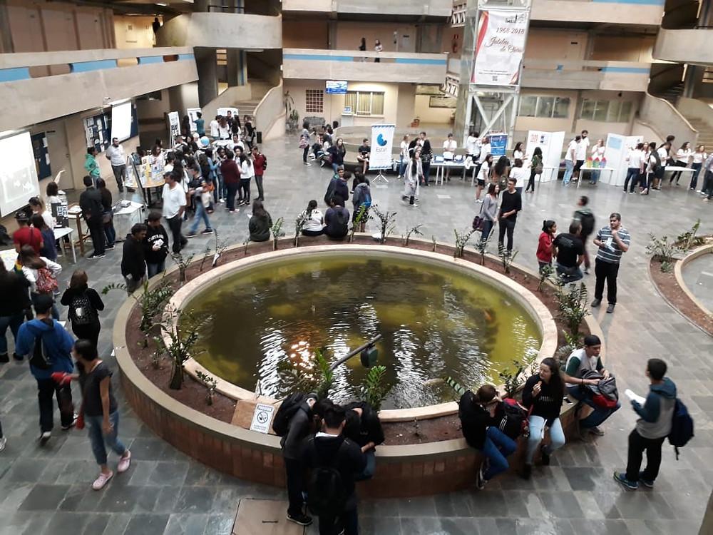 Evento reuniu cerca de 55 mil pessoas - Foto: Divulgação/PMI
