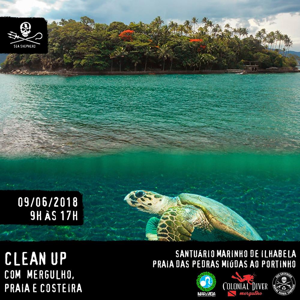 Imagem/Arte: Divulgação /Sea Shepherd