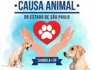 Ilhabela recebe pela primeira vez o Encontro de Ativistas da Causa Animal do Estado de São Paulo