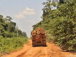 UE quer boicote a produtos de áreas desmatadas