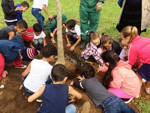Semana do Meio Ambiente é encerrada com plantio de árvores em Angra dos Reis