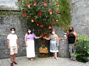 Árvore de Natal do Angraprev começa a ser montada, em Angra dos Reis