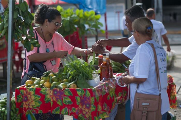 Feira da Agricultura Familiar - Foto: Divulgação/PMP