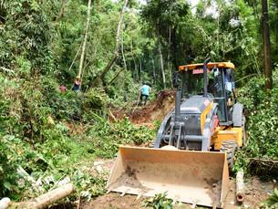Estrada de Castelhanos, em Ilhabela, recebe serviços de desobstrução