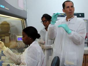 Covid-19: ONU reúne líderes mundiais e setor privado em iniciativa para acelerar tratamentos e vacin