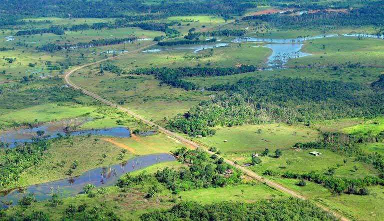 Vista aérea do desmatamento na Floresta Amazônica perto de Manaus, estado do Amazonas, Brasil. O desmatamento é a principal causa das emissões de carbono no Brasil, mas está longe de ser a única causa associada a florestas. Crédito da foto: CIAT International Center for Tropical Agriculture em Visual Hunt / CC BY-SA
