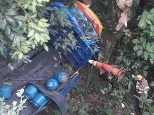 Caminhão de gás arranca poste, cai em ribanceira e bate em árvore em Angra dos Reis