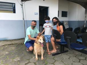 Nove animais são adotados em feira promovida pelo CCZ de Caraguá