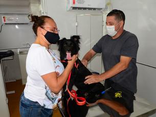 Zoomóvel atende 85 proprietários de cães e gatos no Massaguaçu, em Caraguá