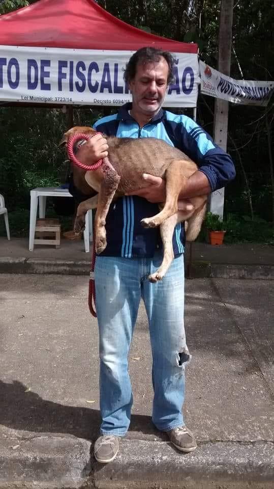 Protetor Carlos Rocha com animal em situação de abandono - Foto: Carlos Rocha/Arquivo pessoal