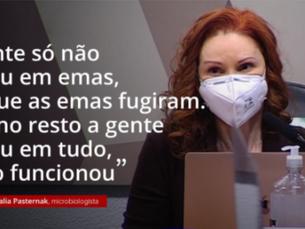 'Essa mentira mata', diz microbiologista à CPI sobre cloroquina