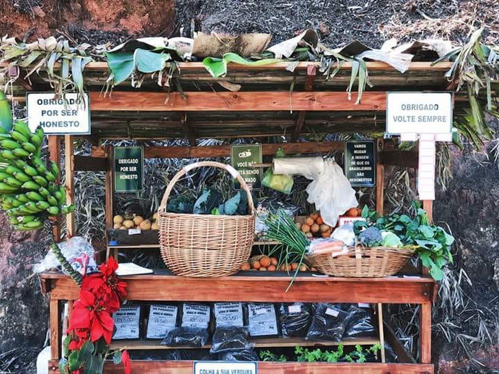 Aposentada de São José cria 'barraca da confiança' com venda de frutas e verduras (Foto: Arquivo pessoal/ Denise Vilhena)