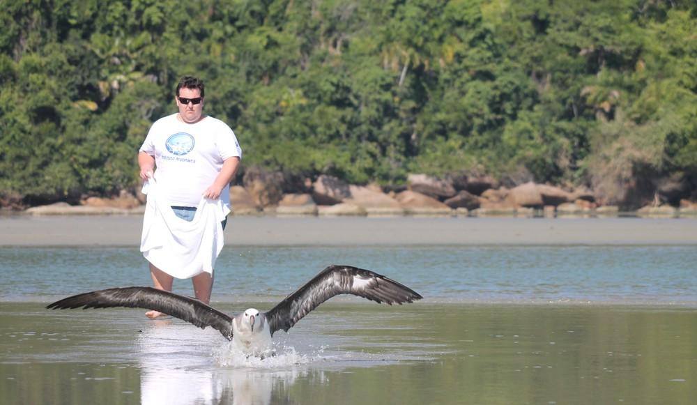 Animal foi devolvido à natureza nesta terça-feira (3) - Foto: Instituto Argonauta/Divulgação