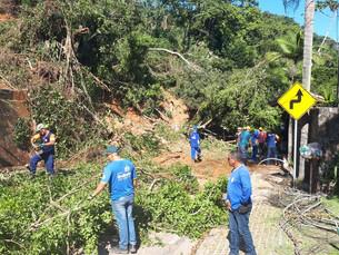 Prefeitura de Ilhabela inicia trabalho de desobstrução da SP 131 com a retirada de árvores e poda