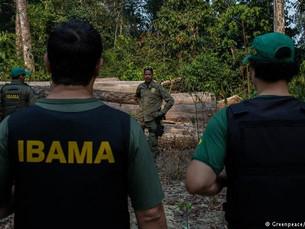 Ascensão de Bolsonaro gera tensão entre ambientalistas
