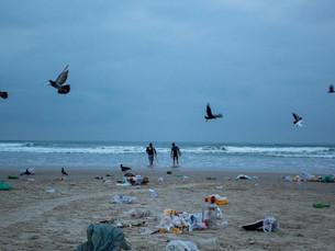 Após feriado, voluntários retiram 360 kg de lixo da Praia Grande em Ubatuba