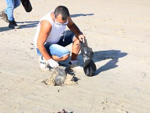 Em Caraguatatuba, voluntários promovem limpeza nas praias Martim de Sá, Capricórnio e Camaroeiro nes