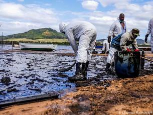 Mundo fracassou em cumprir metas para salvar a natureza, diz ONU