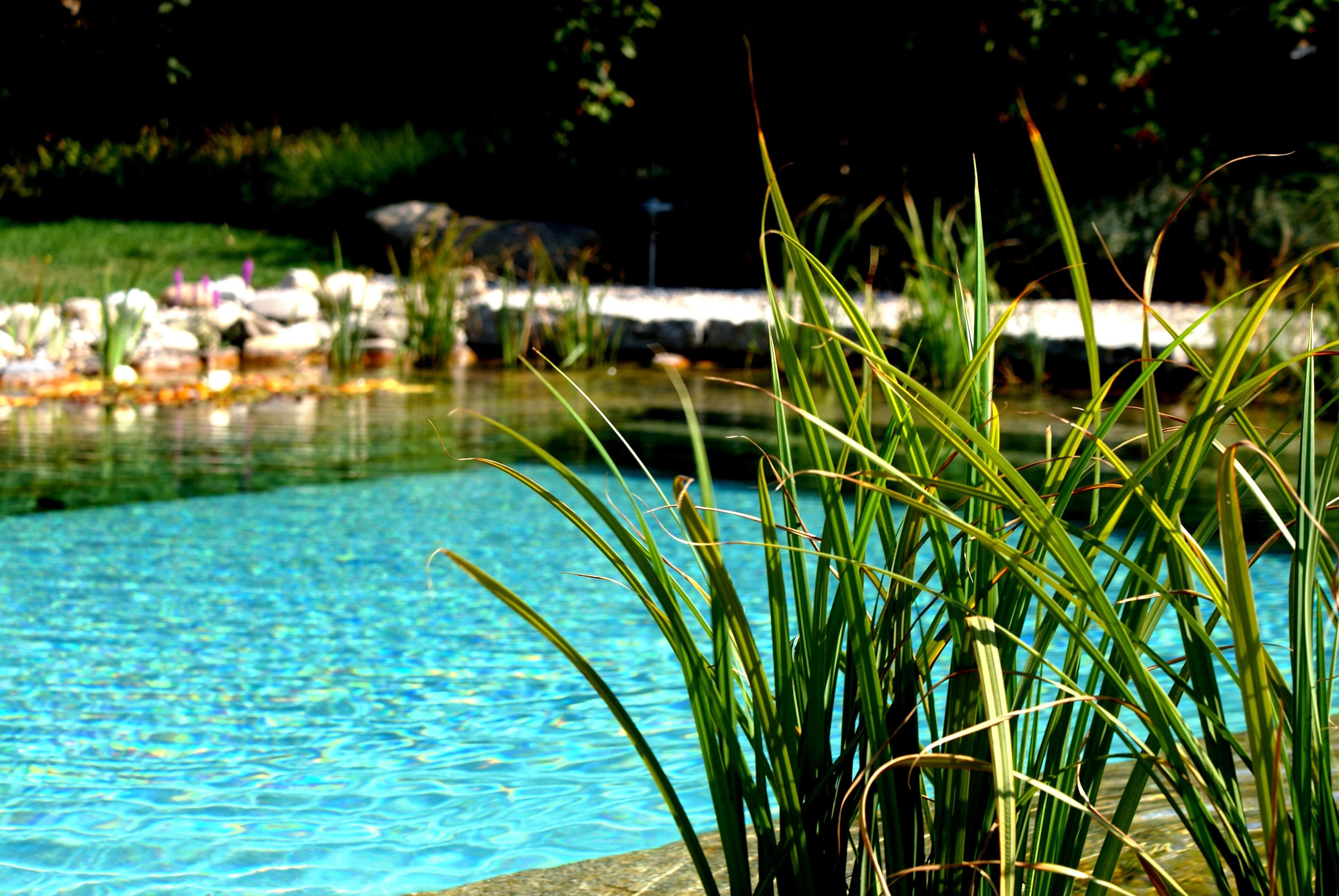 Gartenbau - Wasser Biel
