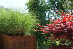 Gartengestaltung - Begrünung