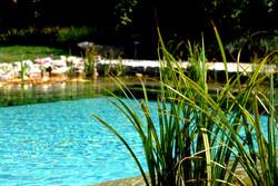Gartenbau - Wasser