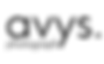 Logo_avys_small-1.png
