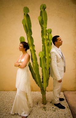 cactus témoins