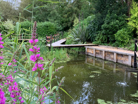 A stunning space in Burton Joyce