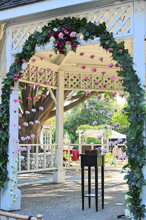 Carnation Backdrop