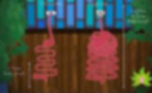 bonheur en fleur alimentation vivante ateliers healthy santé microbiote légumes fruits guérison maladie de crohn régénération coaching courses placards cru alimentation saine naturopathie psychomotricité psychomotricienne nutrition flore intestinale manon touati crohn sur la voie de la guérison maladie de crohn rch crohn rémission guérison coaching cru vivant guérir anticancer réf antioxydant, nature, huiles végétales, lentilles, sarrasin, sans gluten, sans lait animal, sans sucre, jeûne, jeûne intermittent crohn sur la voie de la guérison mici intestins singes fruits frugivore ben hicaubert natural hygie omnivore