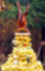 bonheur en fleur alimentation vivante ateliers healthy santé microbiote légumes fruits guérison maladie de crohn régénération coaching courses placards cru alimentation saine naturopathie psychomotricité psychomotricienne nutrition flore intestinale manon touati crohn sur la voie de la guérison maladie de crohn rch crohn rémission guérison coaching cru vivant guérir anticancer réf antioxydant, nature, huiles végétales, lentilles, sarrasin, sans gluten, sans lait animal, sans sucre, jeûne, jeûne intermittent crohn sur la voie de la guérison mici intestins singes fruits frugivore ben hicaubert natural hygie