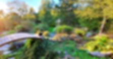 manon touati bonheur en fleur séjour bien être sylvothérapie méditation alimentation saine st remy les chevreuse paris naturopathie psychomotricité psychomotricienne naturopathe régénération santé nutrition autoguérison nature saint jardin