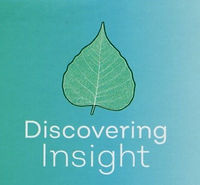 Discovering Insight with Rob Foster20190