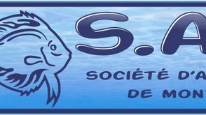 See you at the Société d'Aquariophilie de Montréal, Sunday November 12!