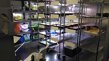 aquatic plant laboratory