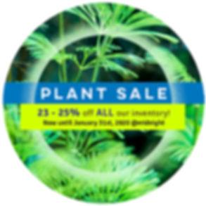 abc-plant-sale.jpg
